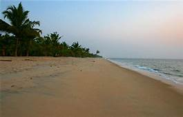 back waters and beaches of kerala